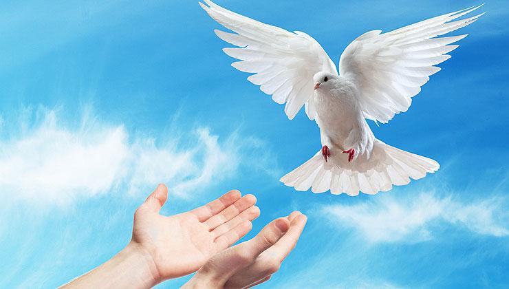 Lekcja darów Ducha Świętego – Biblijne przygotowanie