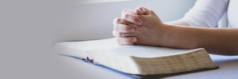 Szukaj swego powołania u Boga